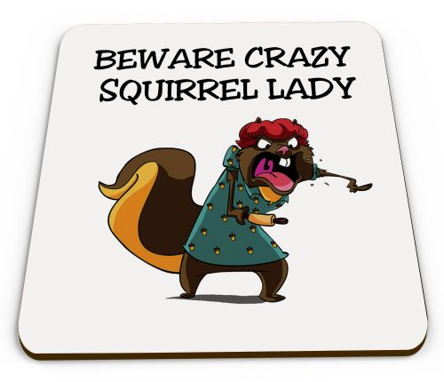 Crazy Squirrel Lady Novelty Funny Mug Coaster